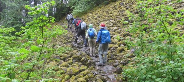 Mt. Defiance Hike