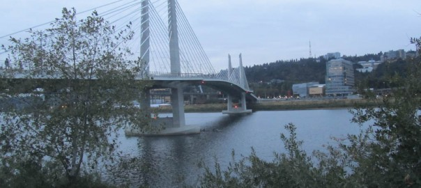 Tilikum Crossing Ramble