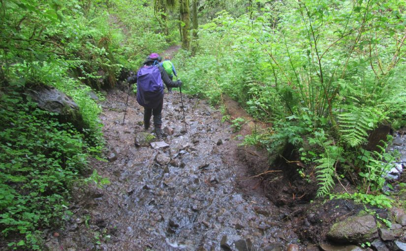 Wahkeena to Devils Rest Hike