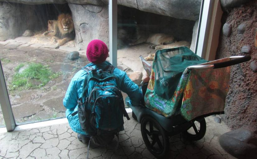 Oregon Zoo Visit