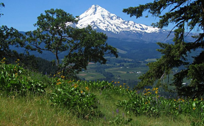 Bald Mountain Hike