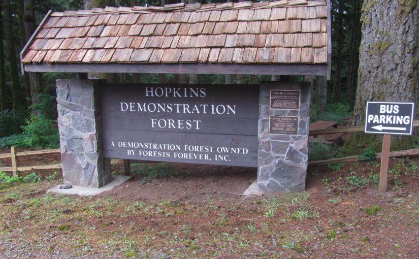 Hopkins Demonstration Forest Walk