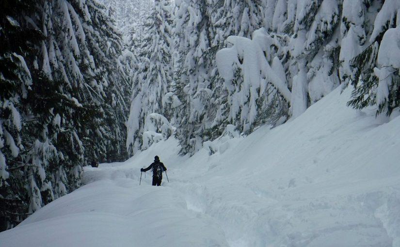 Buzzard Point Snowshoe