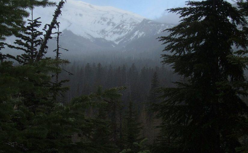 Pocket Creek Snowshoe