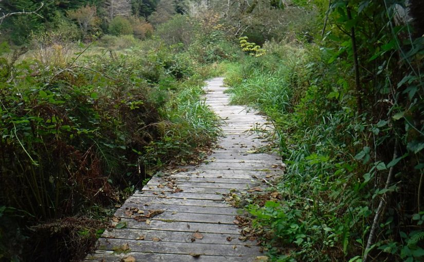 Fort to Sea Trail